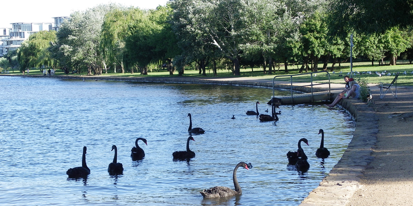 Bowen Park (Image J. Ramsay)